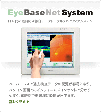 Eye Base Net System
